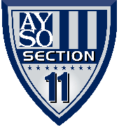 Section 11