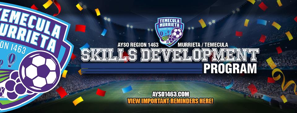 Skills Dev Information