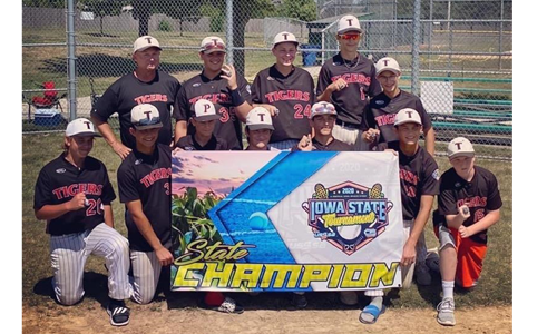 Tigers 14u Black AAA State Champs Gold Division