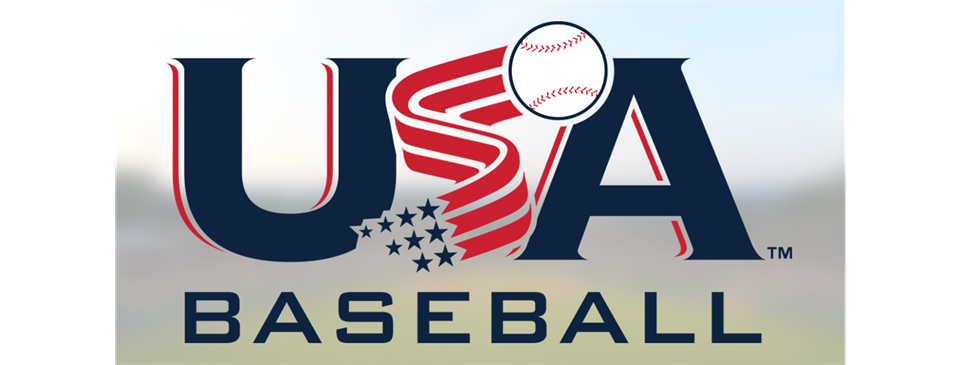 USA Baeball Bat Information