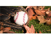Fall Ball Registration is open