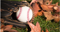Fall Ball Registration Available