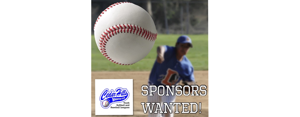 Looking To Sponsor A Team?
