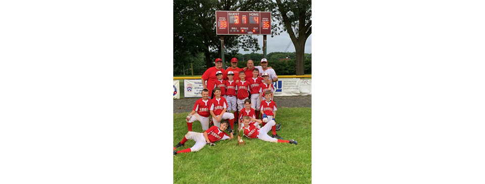 Town Champs!!  2019 LL Angels