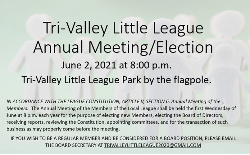 ANNUAL MEETING BOARD ELECTION