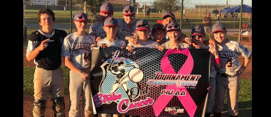14U USSSA Strike Out Cancer Champions
