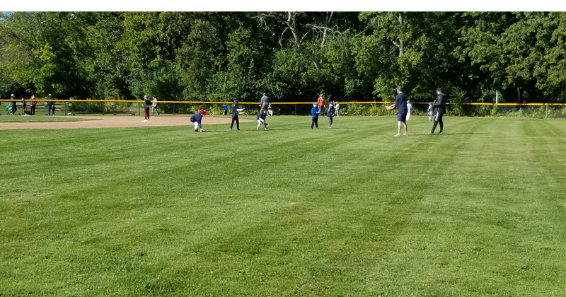 Tee Ball in action!