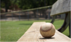 Stay up to date with Little League