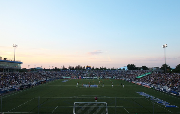 Cosmos Country