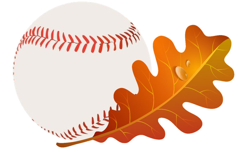 Fall Ball Registration is now open!