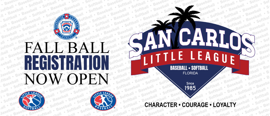 Little League Fall Ball is BACK!