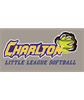 Charlton Softball Association