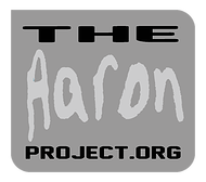 Image result for The Aaron Project