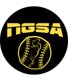 Noblesville Girls Softball Association