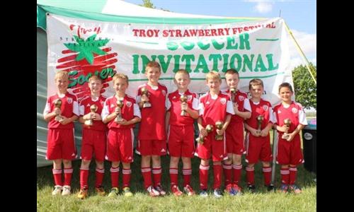 FCT Firehawks - Strawberry Champs - BU9 Gold