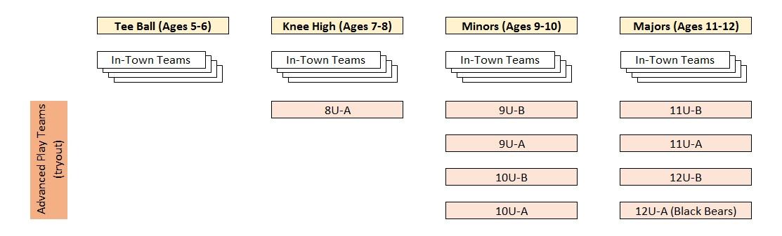 Jr Division structure