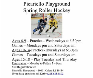 Picariello Playground Spring Roller Hockey