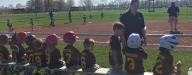 Baseball programs for ALL ages