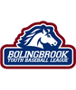 Bolingbrook Youth Baseball League