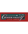 Chester Valley Little League