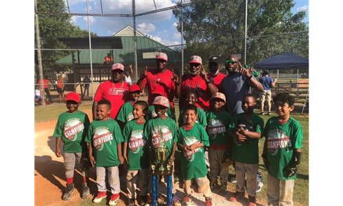 Step Up to the Plate 8U Georgia Reds win 2019 East Point Connection Tournament