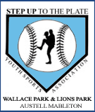 Step up to the plate youth sports